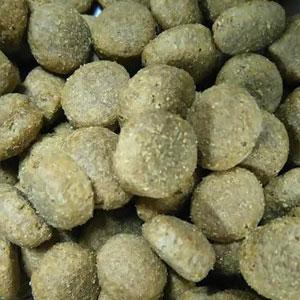 Ecologisch hondenvoer brokken